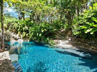 Luxury 7 bedroom Barbados villa. The Privacy! The Location! - Barbados vacation rentals
