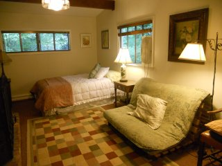 Studio apt in quiet setting - Asheville vacation rentals