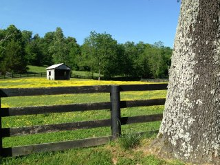 Charming Barn with Internet Access and A/C - Leiper's Fork vacation rentals