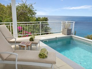 Villa Miki 2 bedrooms offers a serene atmosphere at highly reasonable rates - Gustavia vacation rentals