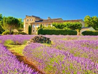 Sunny 6 bedroom Villa in Bonnieux - Bonnieux vacation rentals