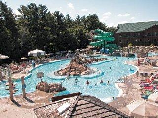Wyndham Tamarack - Fri-Fri, Sat-Sat, Sun-Sun only! - Lake Delton vacation rentals