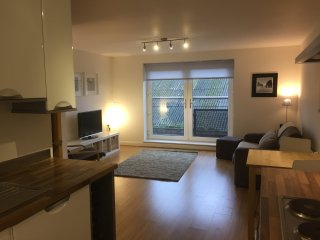 Modern, sunny apartment in great location near Chester centre and train station - Chester vacation rentals