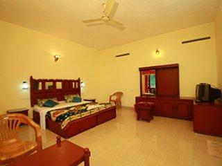 Cozy 1 bedroom Vacation Rental in Kumily - Kumily vacation rentals