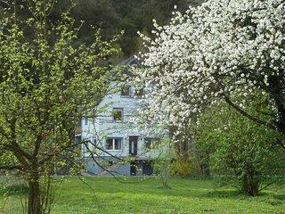60qm direkt an der Mosel mit Traumblick, eigener Moselwiese, 2 Balkonen, WLAN - Alf vacation rentals