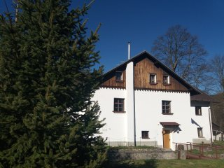 Nice Bed and Breakfast with Internet Access and Boat Available - Petrovice u Susice vacation rentals