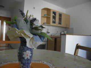 Cozy one bedroom apartment in Barbat - Barbat vacation rentals