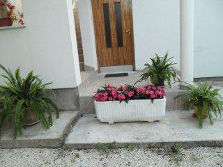 Apartments Atis - Apartment 02 (LT8917-2) - Sukosan vacation rentals