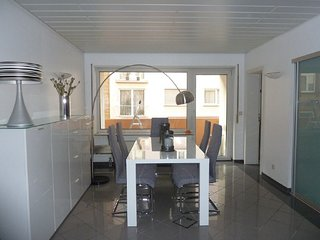 Stunnning Business Apartment with garage,Wifi - Mannheim vacation rentals