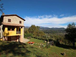 Nice 2 bedroom House in Gallicano - Gallicano vacation rentals