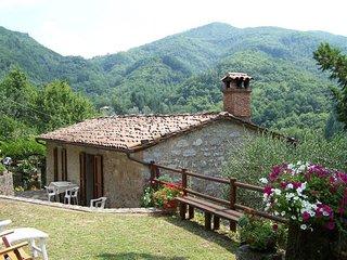Piano Di Coreglia-ghivizzano - 603001 - San Romano vacation rentals