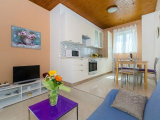 Nice Studio with Internet Access and Television - Soline vacation rentals