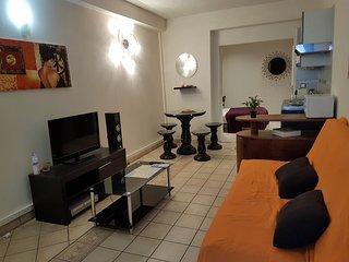 SN7 PV2-Paul Valery - Nice vacation rentals