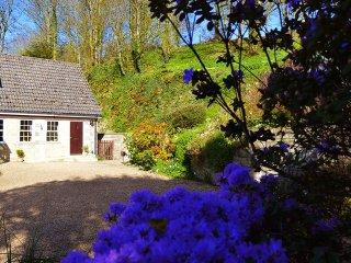 Little Tremore Cottage - Beautiful rural village hideaway - Shorwell vacation rentals