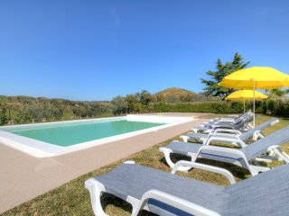 V5 Mimosa - 5 bedroom villa with private pool and garden - Silves vacation rentals