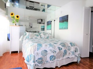 Sea Rocket 12 - North Redington Beach vacation rentals