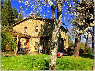 Tuscan farmhouse with private pool in Chianti - Lucolena vacation rentals