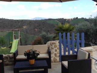 Villa avec piscine au coeur des lavandes et oliviers - Puimichel vacation rentals