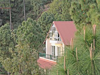 Five Divine Woods, 4 Bedroom Private Luxury Hill Villa with cook, Kasauli Hills - Kasauli vacation rentals