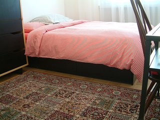 Big Guestroom in Geneva city, close to the UN WIFI - Geneva vacation rentals