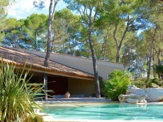 4 bedroom Villa with Internet Access in Montferrier Sur Lez - Montferrier Sur Lez vacation rentals