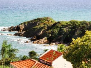 Spectacular Ocean View Villa at Palmas del Mar - Humacao vacation rentals
