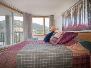Pines Condominium 2095 - Spacious one bedroom, 1.5 bathroom, sleeps 6! - Keystone vacation rentals