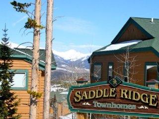 Saddle Ridge - Wildernest vacation rentals