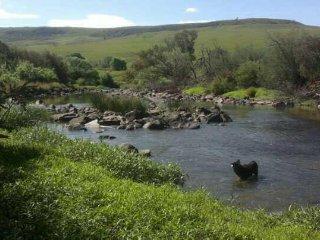 Waterhoek Valley - Heron Cottage - Mooi River vacation rentals