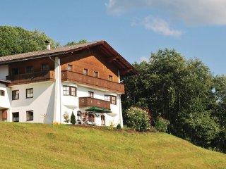 4 bedroom Villa in Hopfgarten, Tirol, Austria : ref 2224998 - Hopfgarten vacation rentals