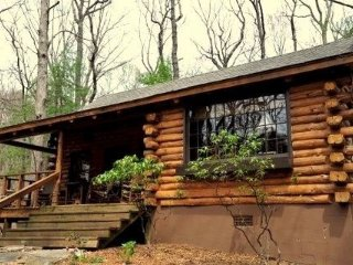 Brer Bear Log Rental Home in Big Canoe Resort - Big Canoe vacation rentals