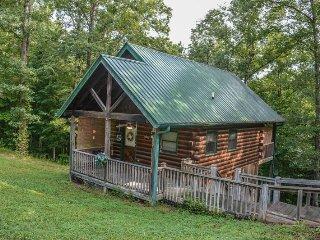 Nice 2 bedroom House in McCaysville - McCaysville vacation rentals
