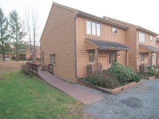 Deerfield Village 135 - Canaan Valley vacation rentals
