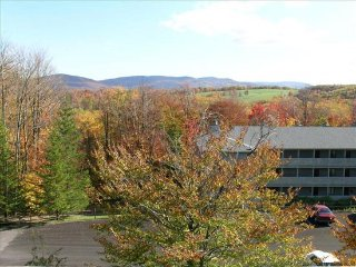 Cozy 1 bedroom Canaan Valley House with Internet Access - Canaan Valley vacation rentals