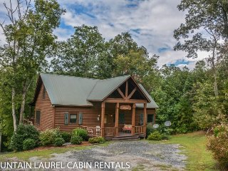 RUNABOUT TROUT LODGE-4BR/3.5BA CABIN ON THE TOCCOA RIVER,SLEEPS 12, EXCELLENT - Blue Ridge vacation rentals