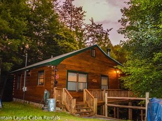 TUCKED AWAY- 2BR/1BA WOODED CABIN, CLOSE TO TOWN, WOOD BURNING FIREPLACE, WIFI - Cherry Log vacation rentals