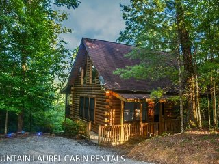2 bedroom House with Wireless Internet in Cherry Log - Cherry Log vacation rentals