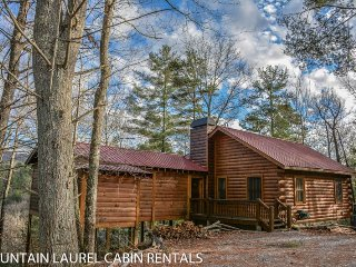 Adorable House with Television and DVD Player - Cherry Log vacation rentals