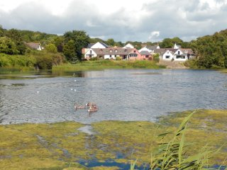 Waters Edge Retreat on the Mill Pond in Pembroke, Pembrokeshire. West Wales, UK - Pembroke vacation rentals