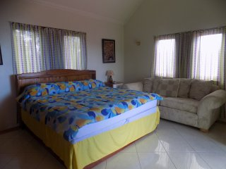 1 bedroom Villa with Internet Access in Anse La Raye - Anse La Raye vacation rentals