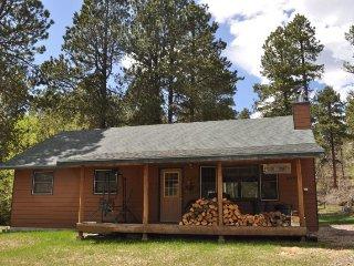 Cozy 3 bedroom House in Lead - Lead vacation rentals