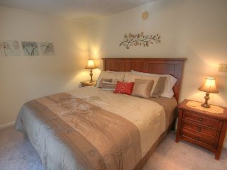 5BR in Boone, 2 King Beds and 3 Queens, Hot Tub, Firepit, Gas Grill, Large - Boone vacation rentals