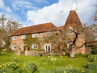 Perfect House with Internet Access and Fireplace - Sedlescombe vacation rentals
