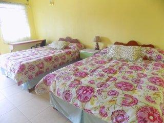 TROPICAL PARADISE VIEW  ( Tamarind Room #6) - Anse La Raye vacation rentals