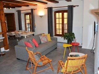L'appartement Le Cerf rue Schongauer - Colmar vacation rentals