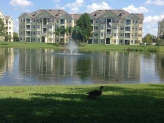Beautiful Cane Island Condo with Pool, Sauna & Spa - Celebration vacation rentals