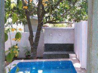 Villa with Plunge pool & jacuzzi - Panadura vacation rentals