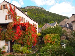 cévennes 3 belles maisons dans ancienne ferme Parc National, joli village,jardin - Treves vacation rentals