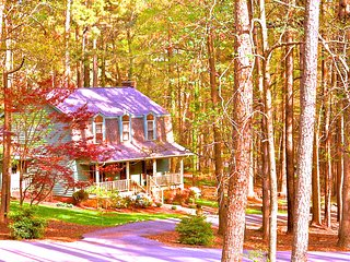 Cozy 3 bedroom 2.5 bath home on 1 acre wooded lot - Raleigh vacation rentals
