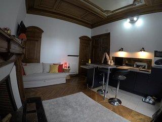 Studio de charme/Charming studio - Saint-Jean-le-Blanc vacation rentals